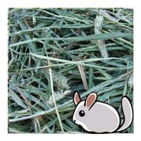 Happy Oak Chinchilla Premium Timothy Hay